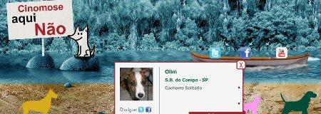 Passeata contra Cinomose - Pele - Cachorro Solitário