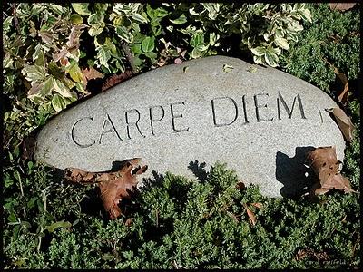 Sociedade dos Poetas Mortos – Filme comentado